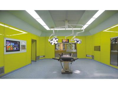 11806钢结构与玻璃完美结合的手术室